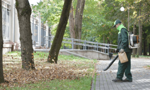 a man is working with the best gas leaf blower