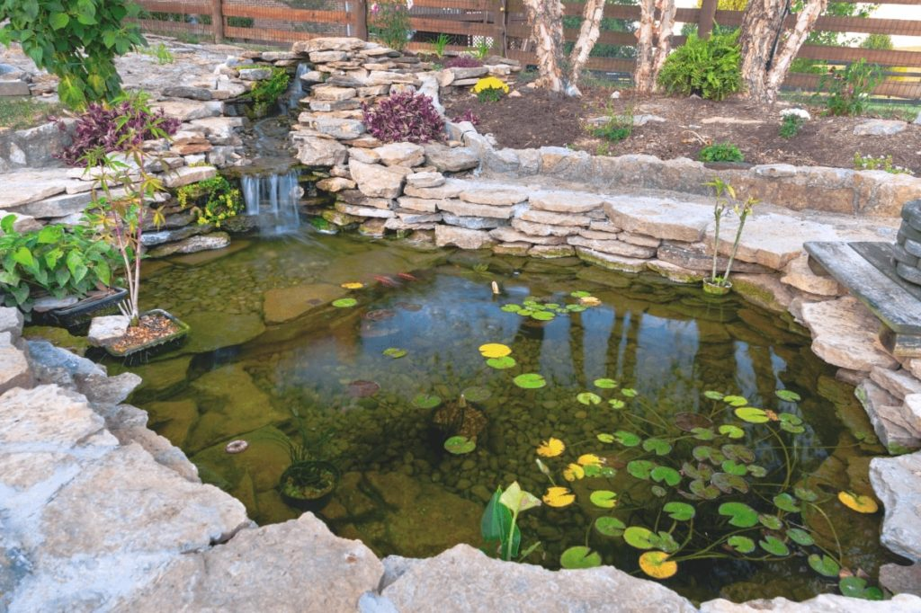 a pond is waiting to be clean by best pond vacuum