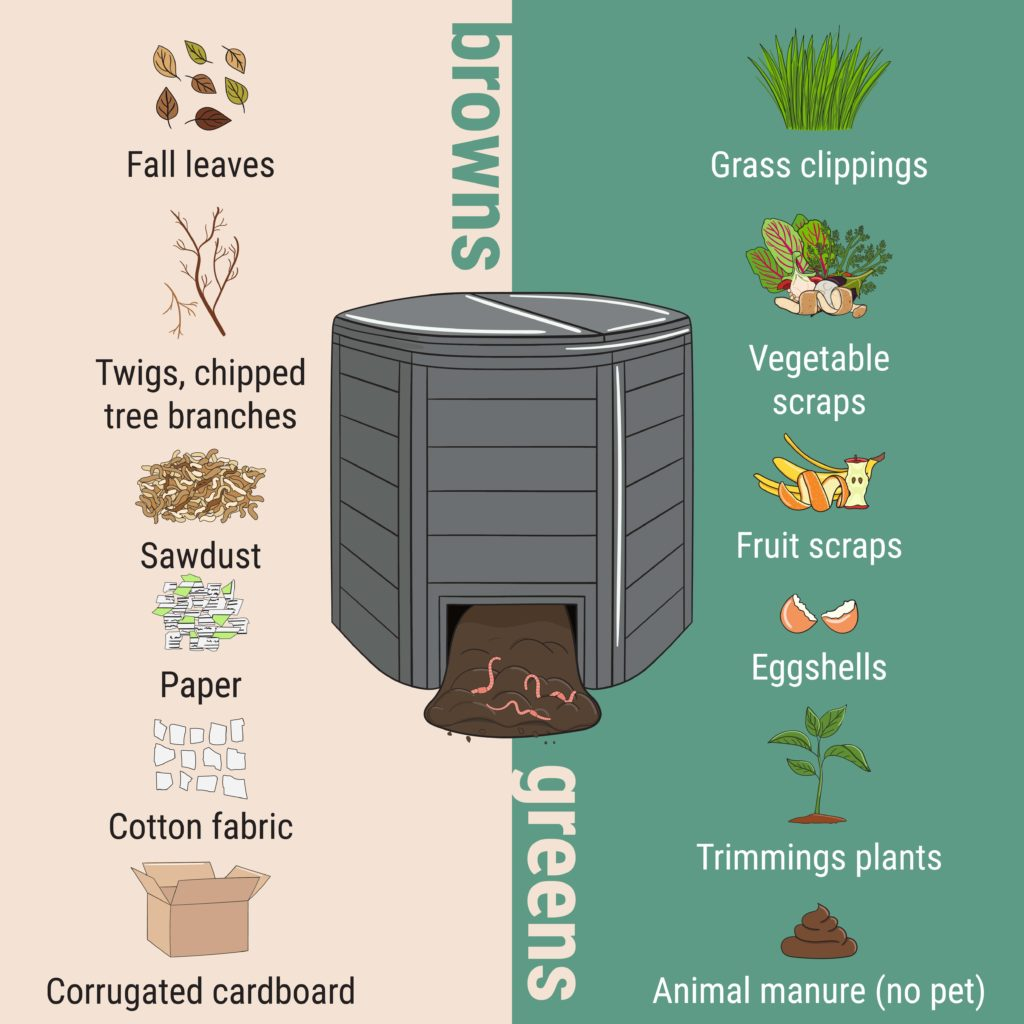 what can you compost? here is the answer